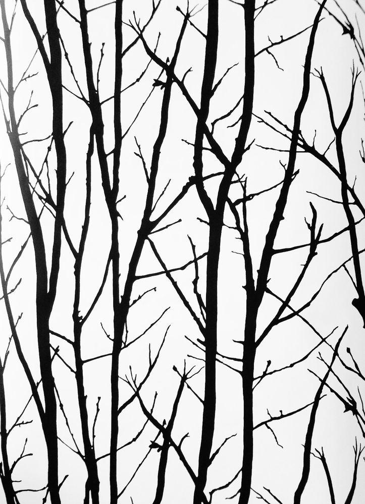 Modern Black Trees and Branches on White Albert Van Luit