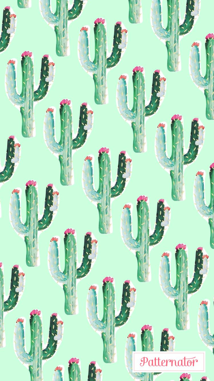 Fondos De Pantalla Sígueme Cactus Nel 2019 Sfondi E Dipinti