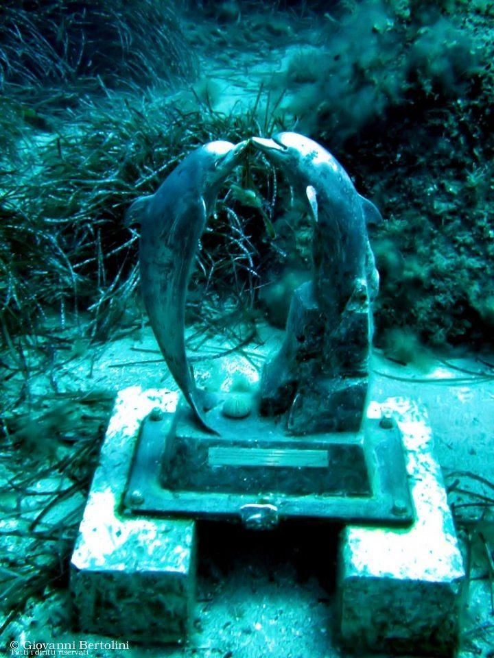Giannutri: Delfini nel blu