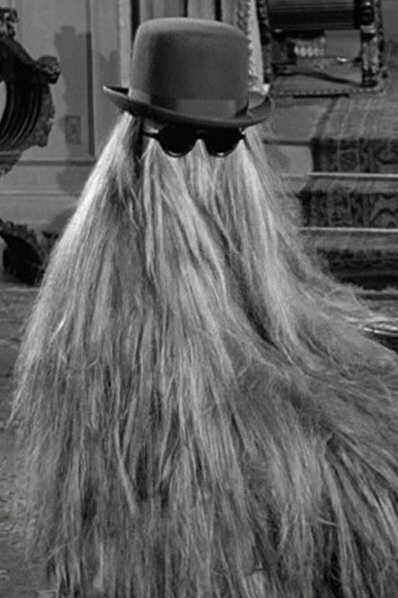 Cousin Itt From The Tv Show The Addams Family Addams Family Tv Show Addams Family Adams Family