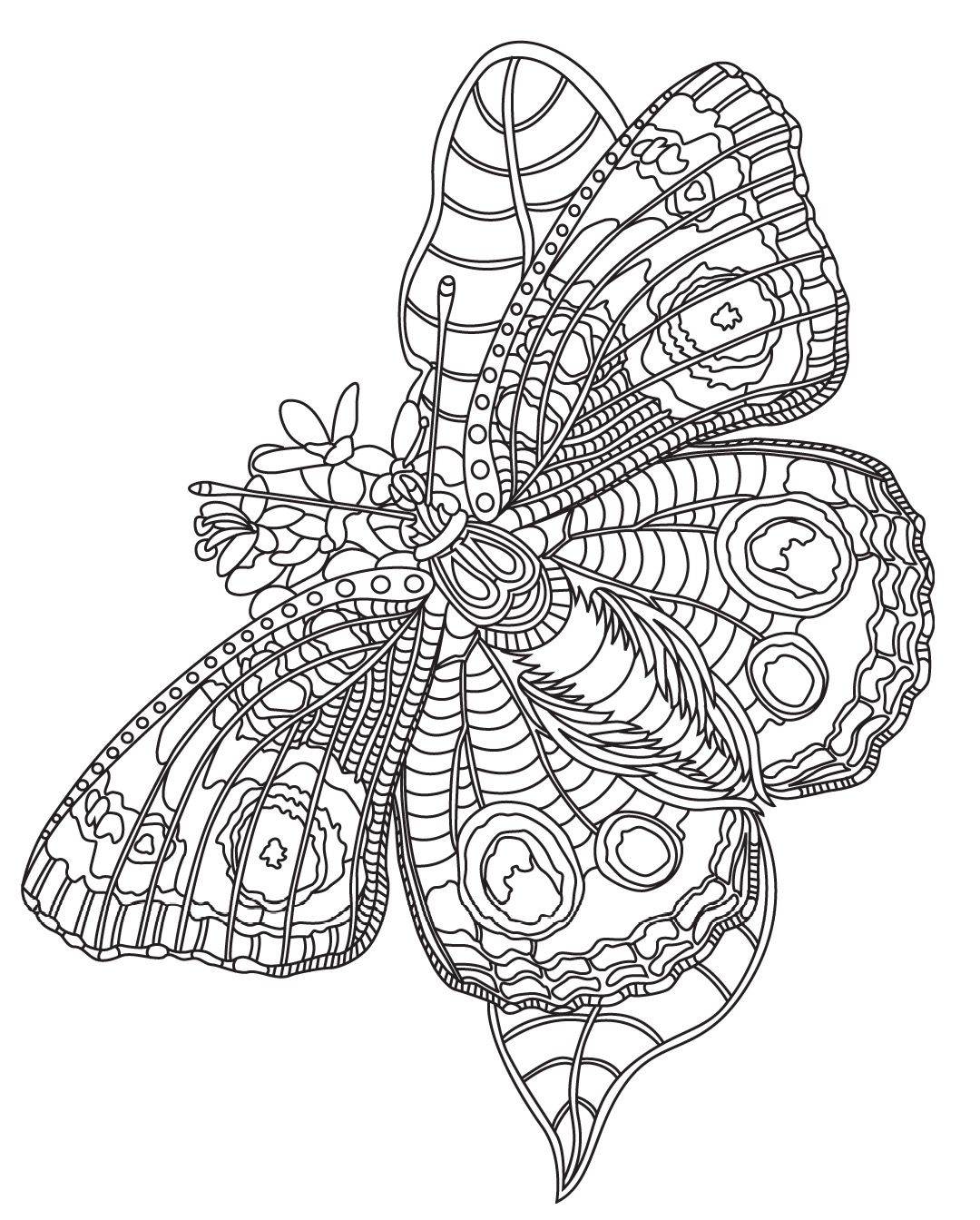 Butterfly Colorish Coloring Book For Adults Mandala Relax By Goodsofttech Insect Coloring Pages Butterfly Drawing Coloring Pages [ 1344 x 1080 Pixel ]