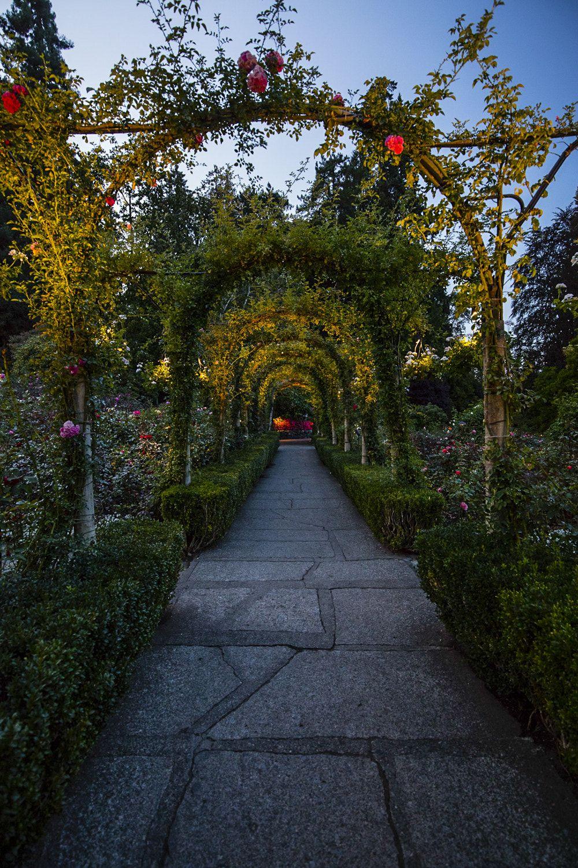 night at Butchart Gardens - in 2019 | Buchart gardens ...