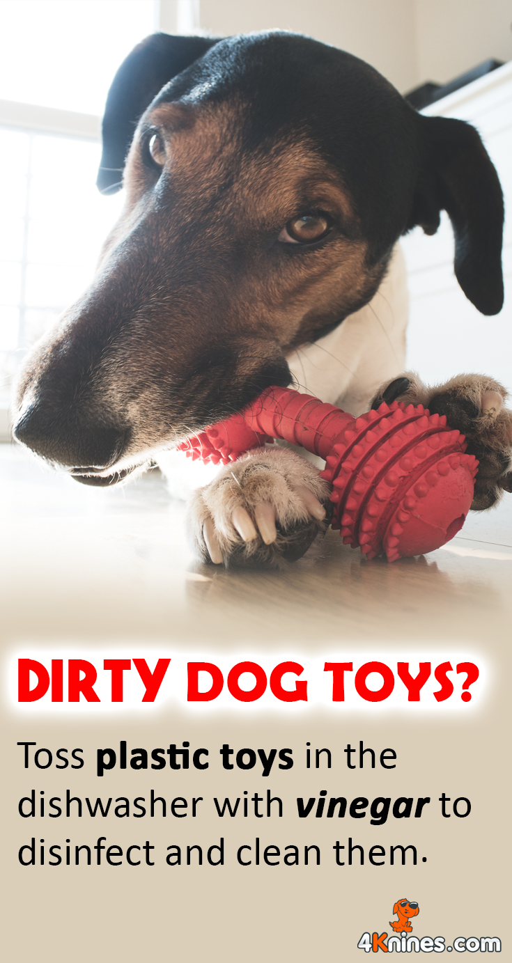 You can place all of your dog's hard rubber or plastic toys in the dishwasher, and instead of dish soap, use vinegar to wash the toys. Your pup's toys will be clean in a pinch!