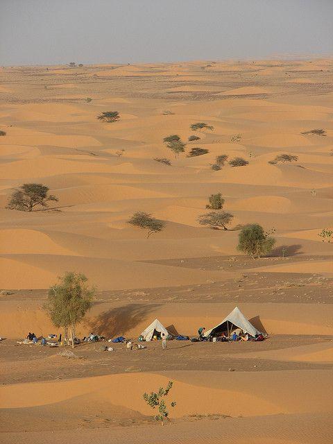 Bivouac, Mauritania