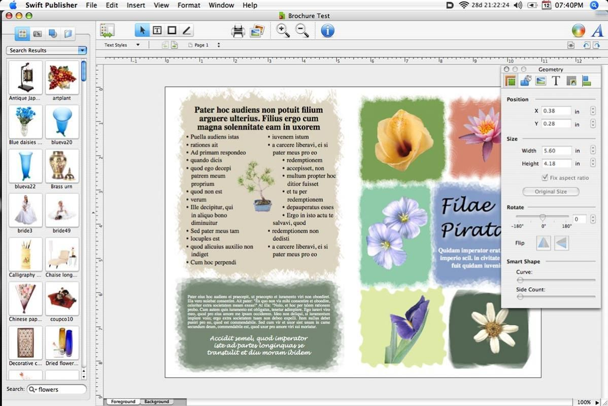 Newsletter Templates Publisher template