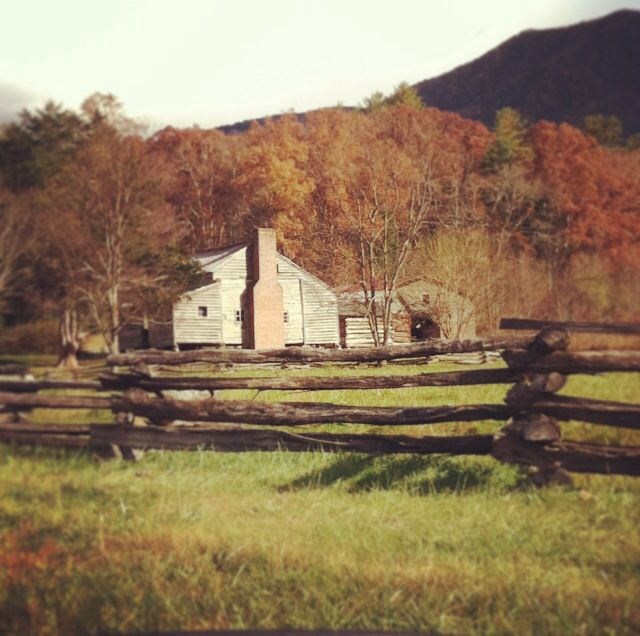 Cabin in Cade's Cove Smokey Mountains TN