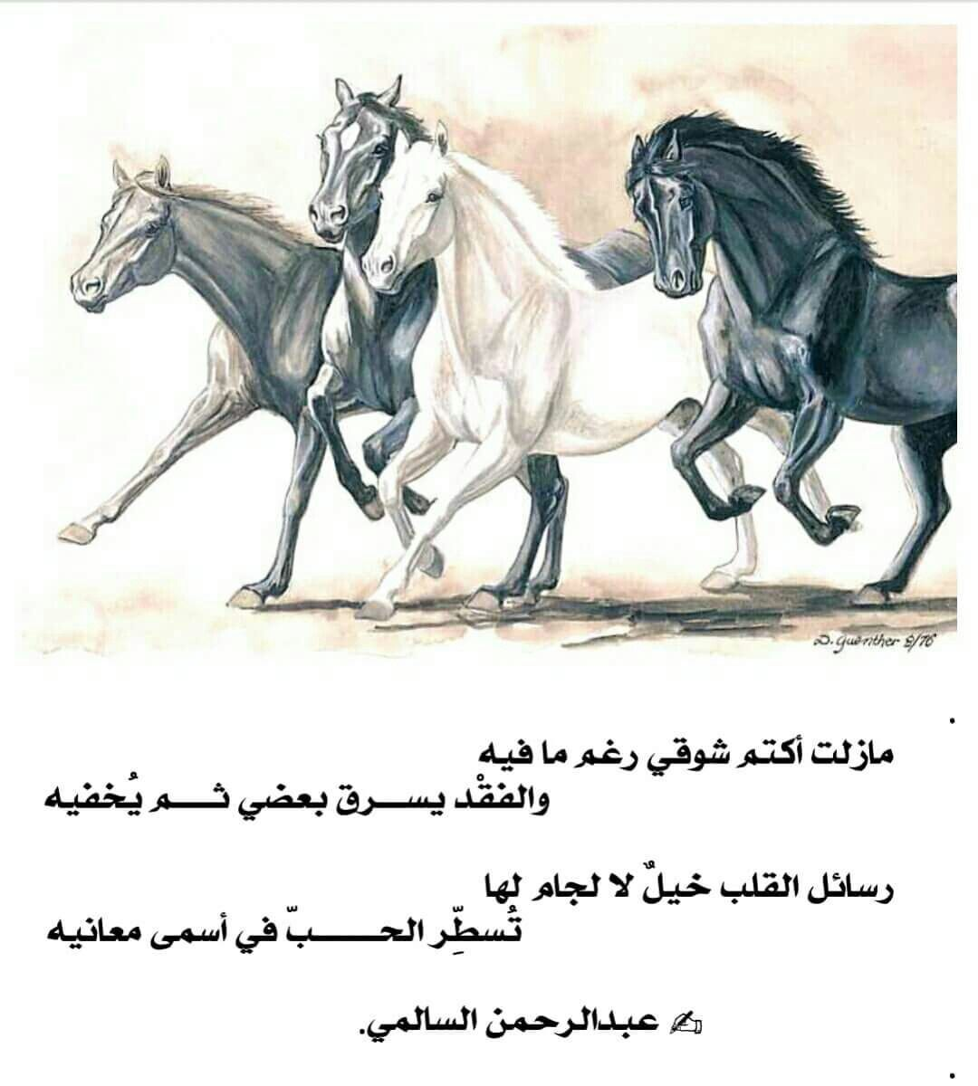 Pin By Mona Alshamsi On عربي Horse Running Drawing Horse Sketch Horse Drawings