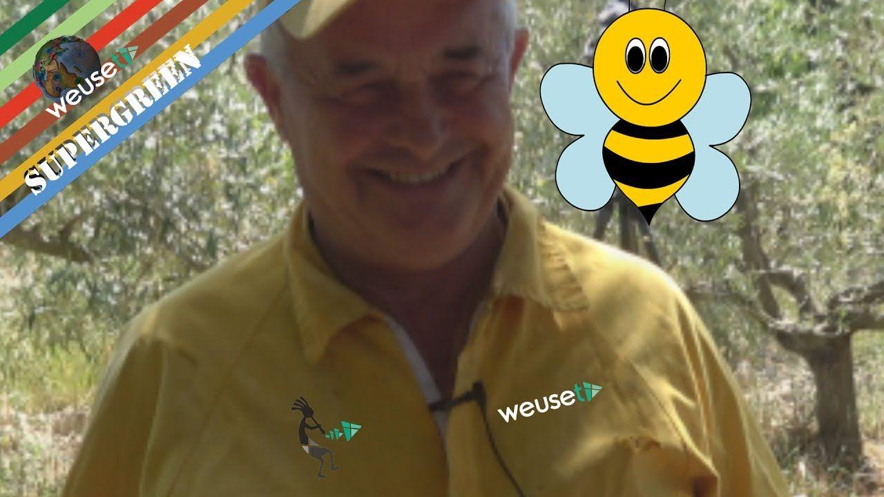 #Basi di #apicoltura con #Fernando il #mondo delle #api #apicolura #arnia #supergreen #weusetv