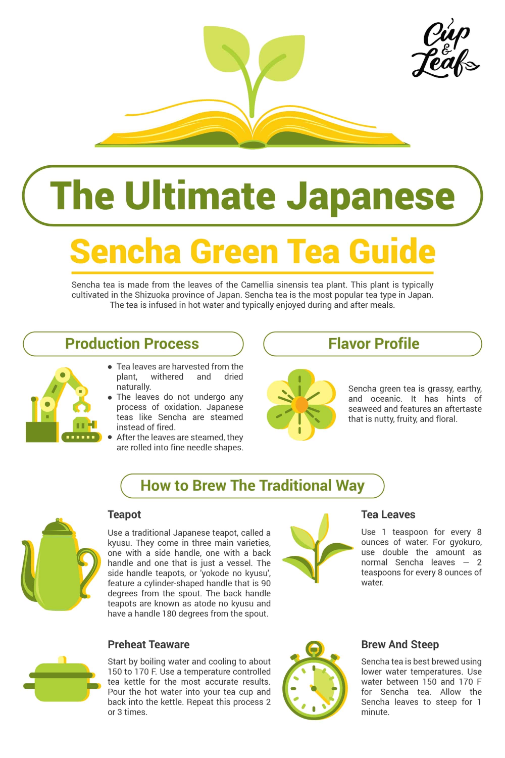 Photo of The Ultimate Japanese Sencha Green Tea Guide – Cup & Leaf