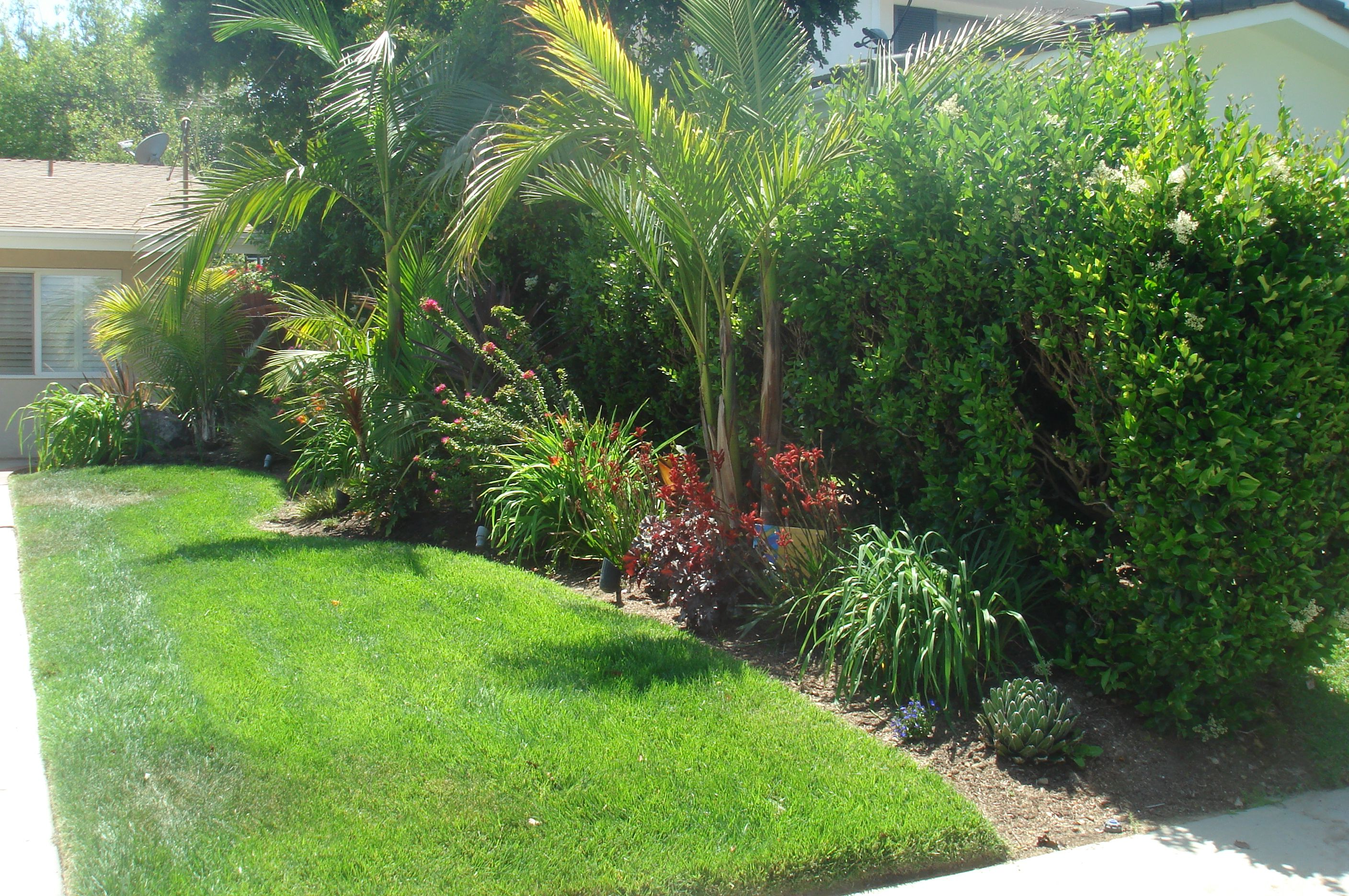 Front yard tropical landscaping ideas for Garden design ideas short wide