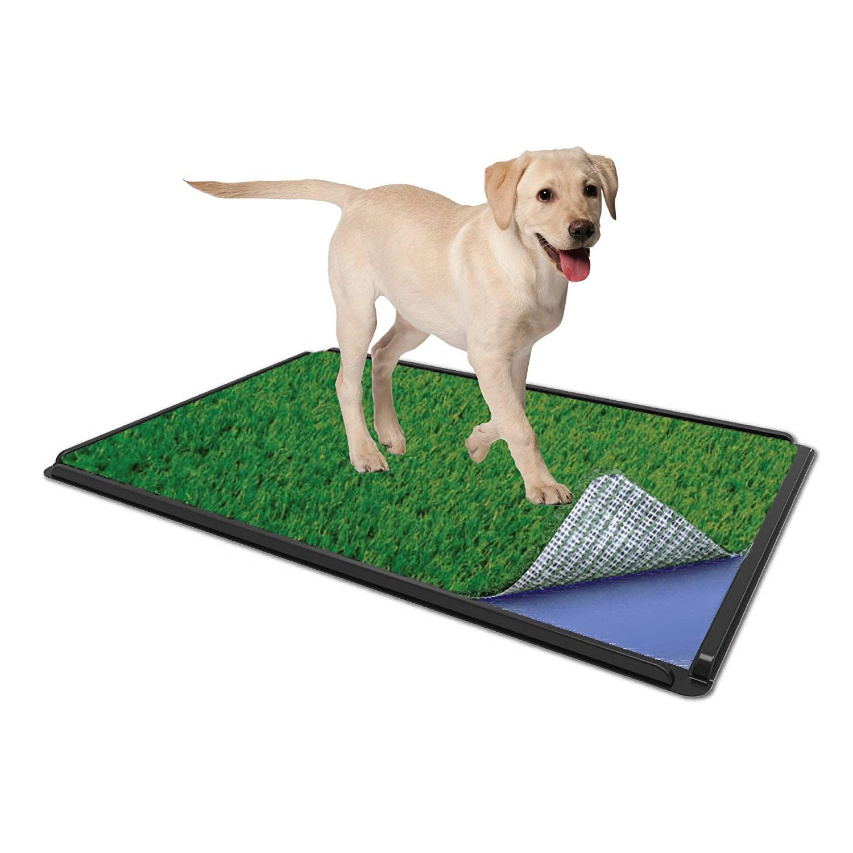 Zorbipad Zp1624c Indoor Grass Dog Potty Supreme Connectable Tray