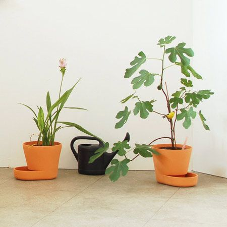 fancy design ceramic plant pots. Easy Street Plant Pots  A One Piece Planter With Useful Extended Tray pot by Uli Budde Don t you want nice things Pinterest
