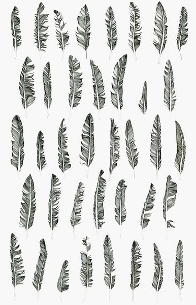 Fallen Feathers by Claire Scully Her inspiration often comes from her everyday surroundings of the metropolis and its relationship with the natural world.