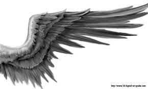 Dark Angel Wings Drawing Google Search With Images Angel
