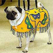 Custom Mardi Gras Dog Costume 1A  sc 1 st  Pinterest & Custom Mardi Gras Dog Costume 1A | For Mia! | Pinterest | Mardi gras ...
