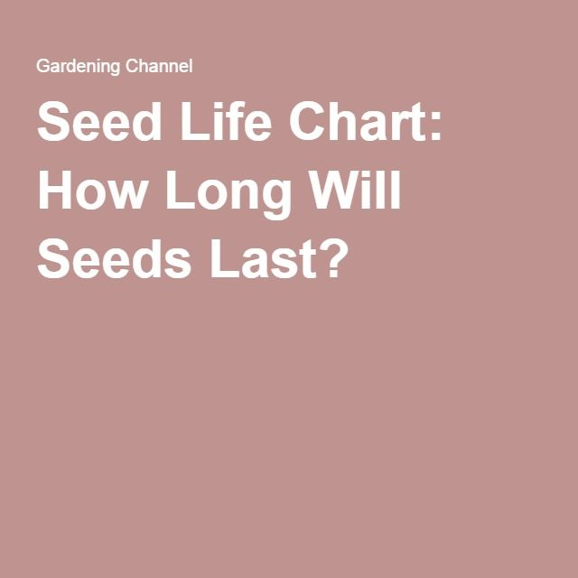 Seed Life Chart: How Long Will Seeds Last?