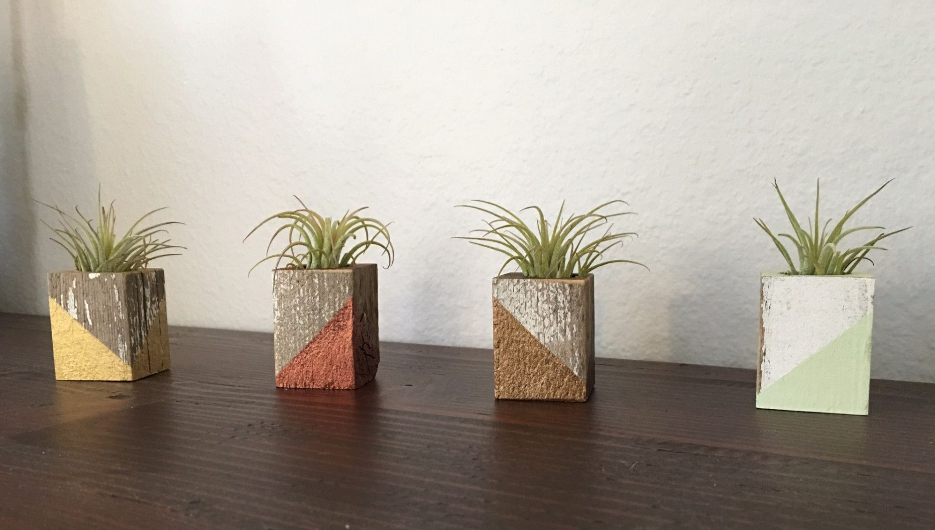 Reclaimed Wood Cube Air Plant Holder With Magnet (Slant Paint
