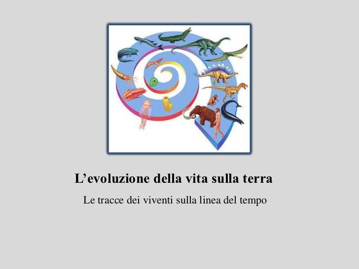 L'evoluzione della vita sulla terra Le tracce dei viventi sulla linea del tempo