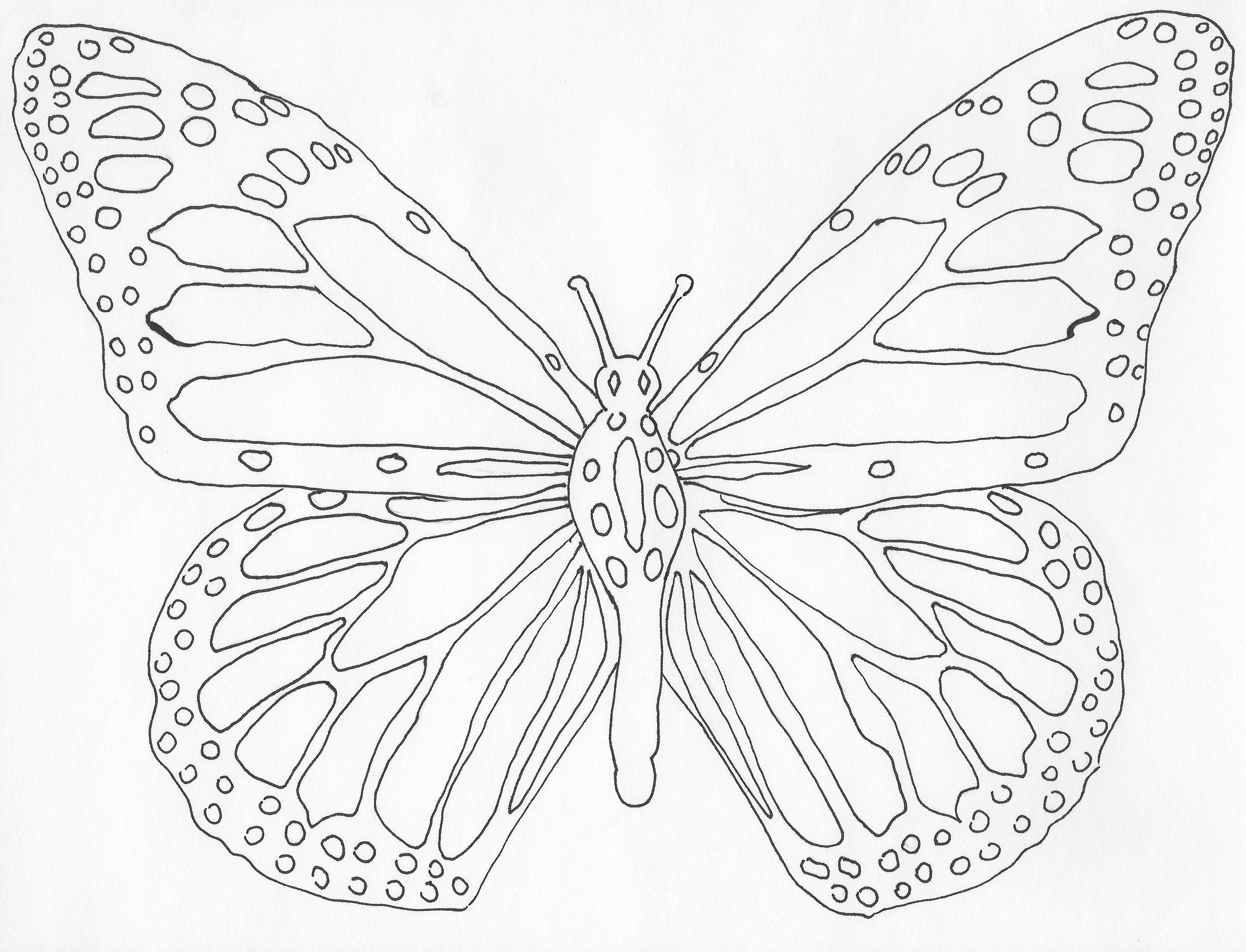 Color Me Beautiful A Page From The Simply Butterflies Coloring Book For Any Age Color Me Beautiful Colorful Butterflies Coloring Books