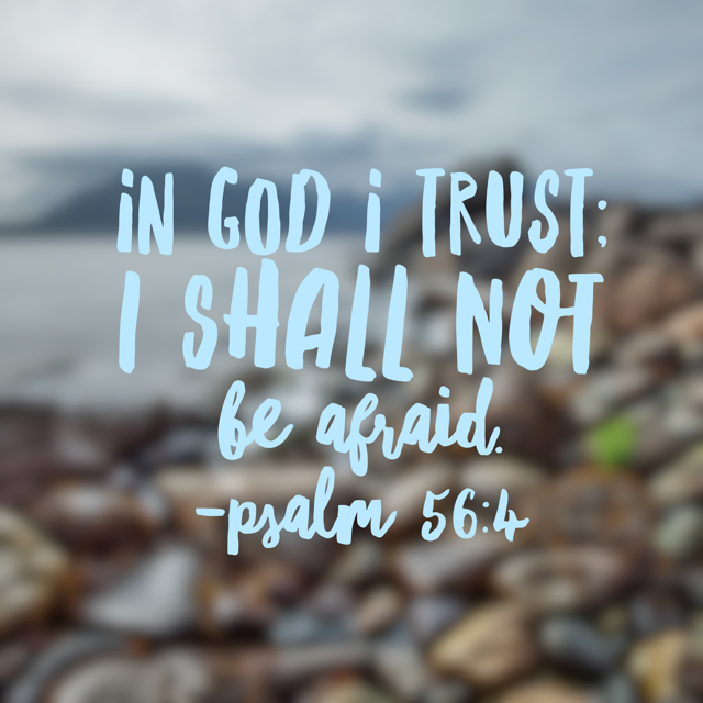 No Fear Bible Reading Challenge Summary Week 1
