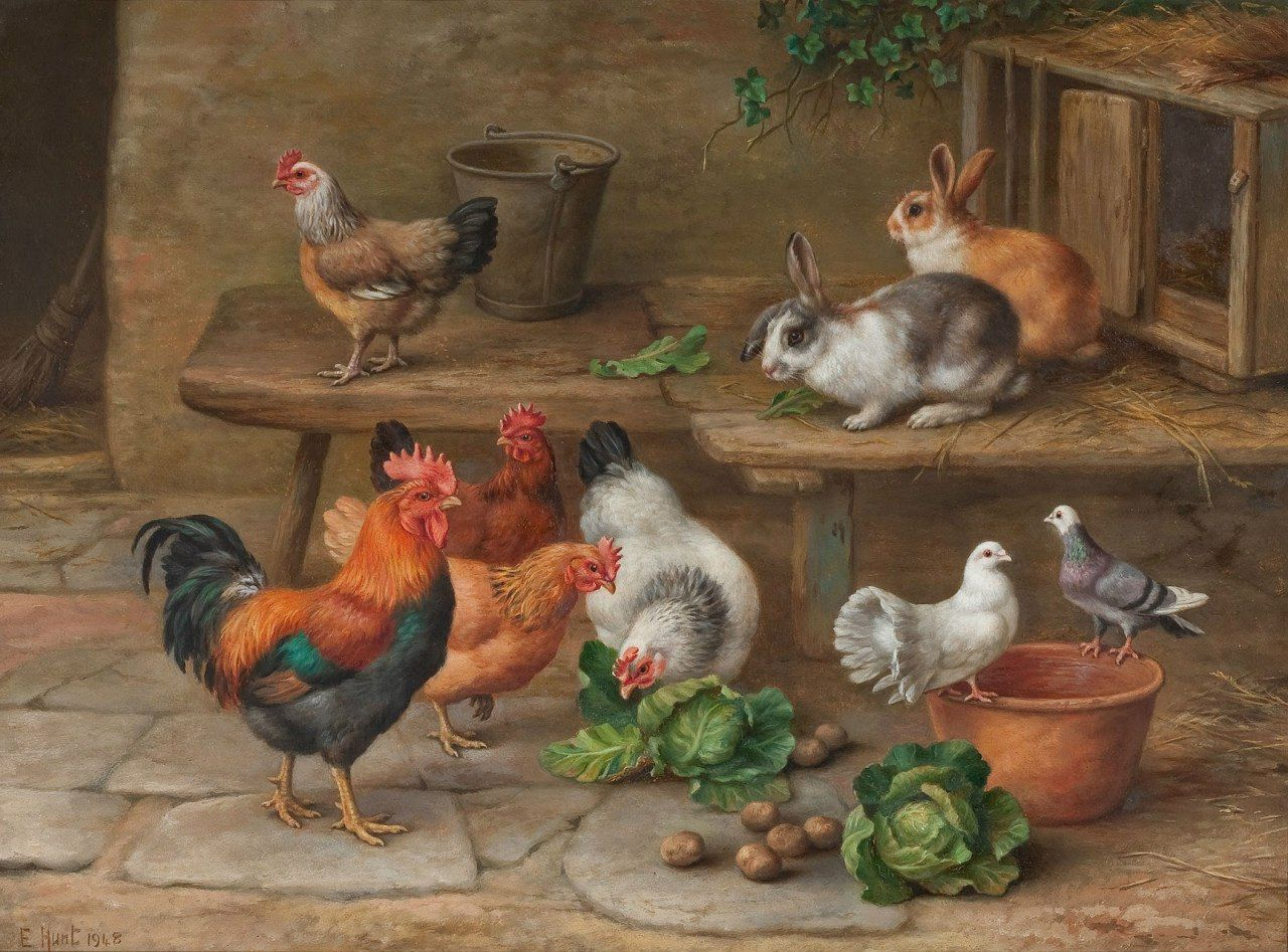 картинки домашних животных и птиц меня много