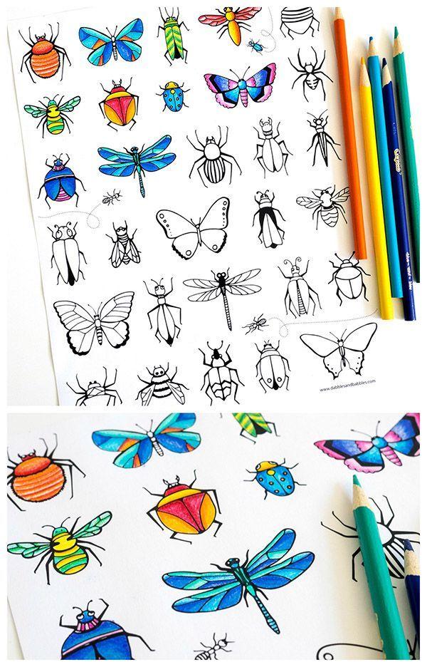 Bugs & Butterflies Coloring Page | Insectos, Colorear y Páginas para ...