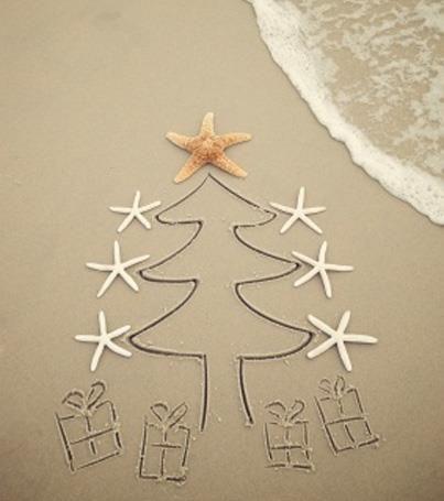 Navidad island
