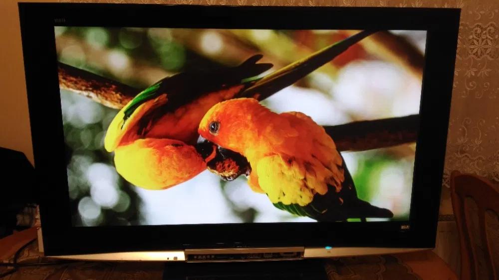 Sprzedam Telewizor Plazmowy Panasonic Gdansk Siedlce Olx Pl Painting Bird Art