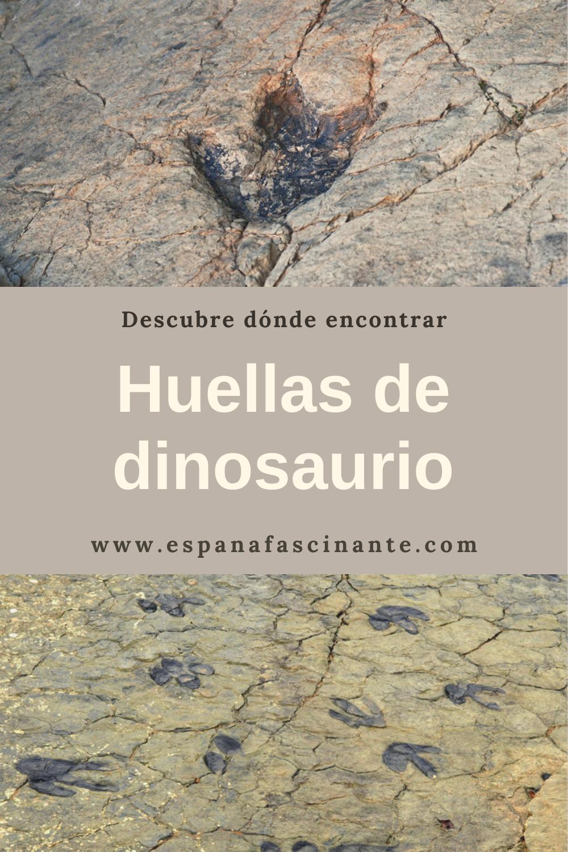 Descubre Los Restos De Dinosaurios Más Fascinantes Huella De Dinosaurio Huellas Lugares De España
