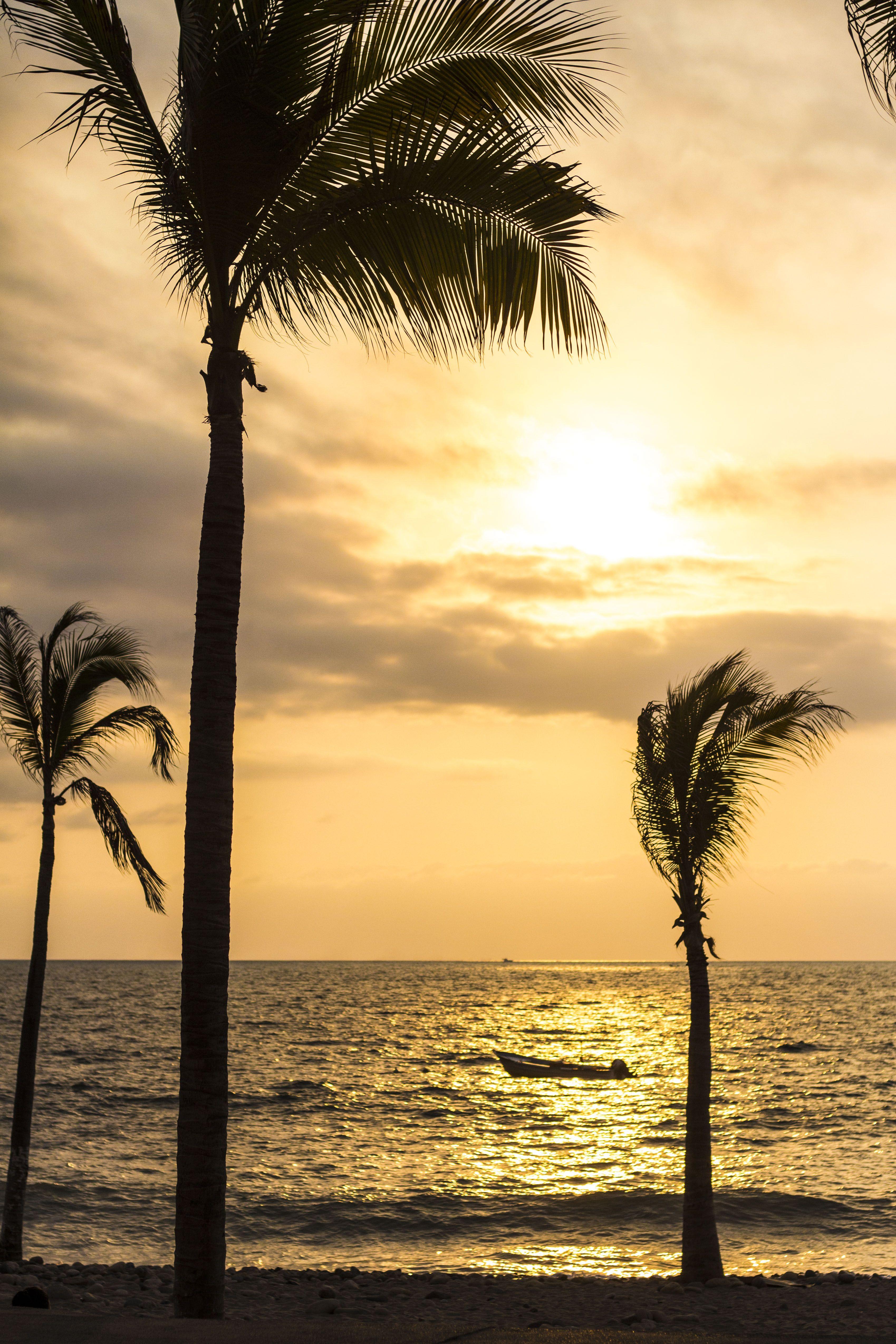 Puerto Vallarta Spring Break Packages 2019