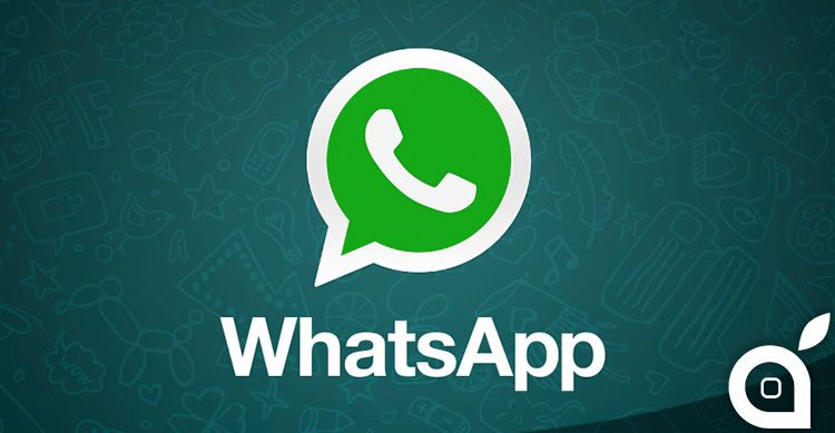WhatsApp permetterà presto di esportare larchivio chat in formato ZIP prevista anche integrazione in Facebook