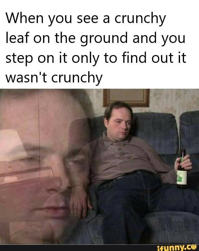 """memes di3zftL17 — iFunny When you see a crunchy leaf on the ground and you step on it only to find out it wasn't crunchy !."""" – popular memes on the site"""
