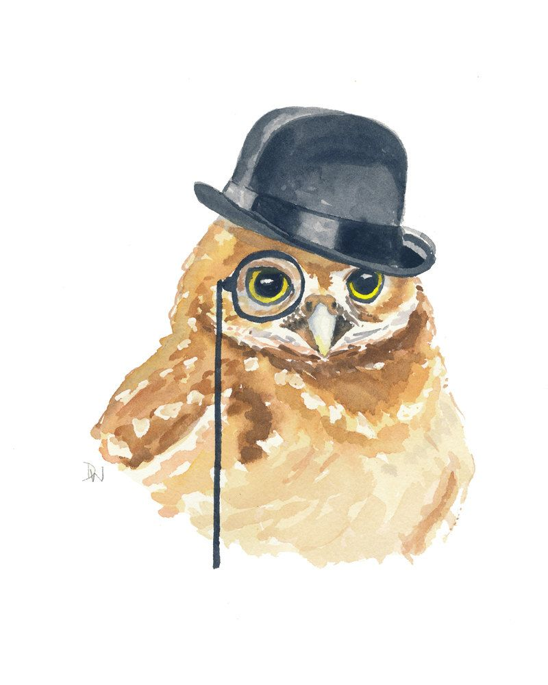 картинки сова в очках и шапке фото детей