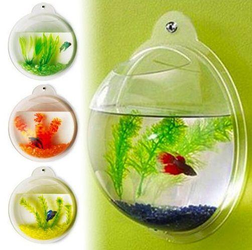 Wall Mounted Fish Bowl Room Themes Fish Tank Bubble Fish