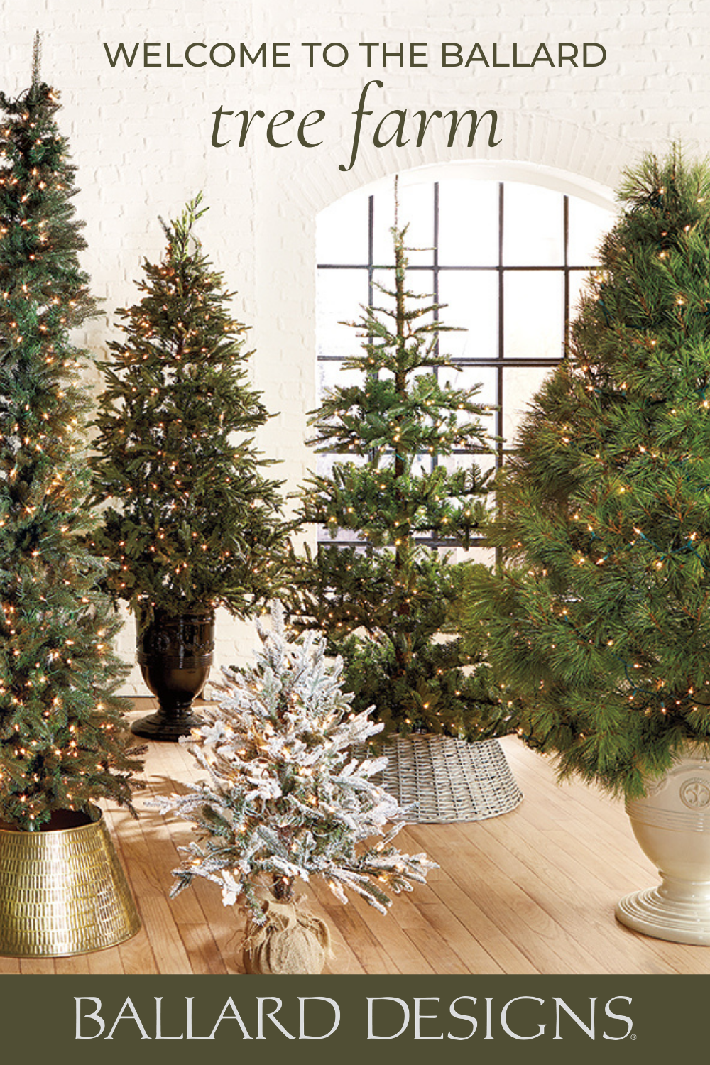 Welcome To The Ballard Designs Tree Farm Shop Indoor Christmas Trees Of All Shapes Sizes And In 2020 Pre Lit Christmas Tree Indoor Christmas Flocked Christmas Trees