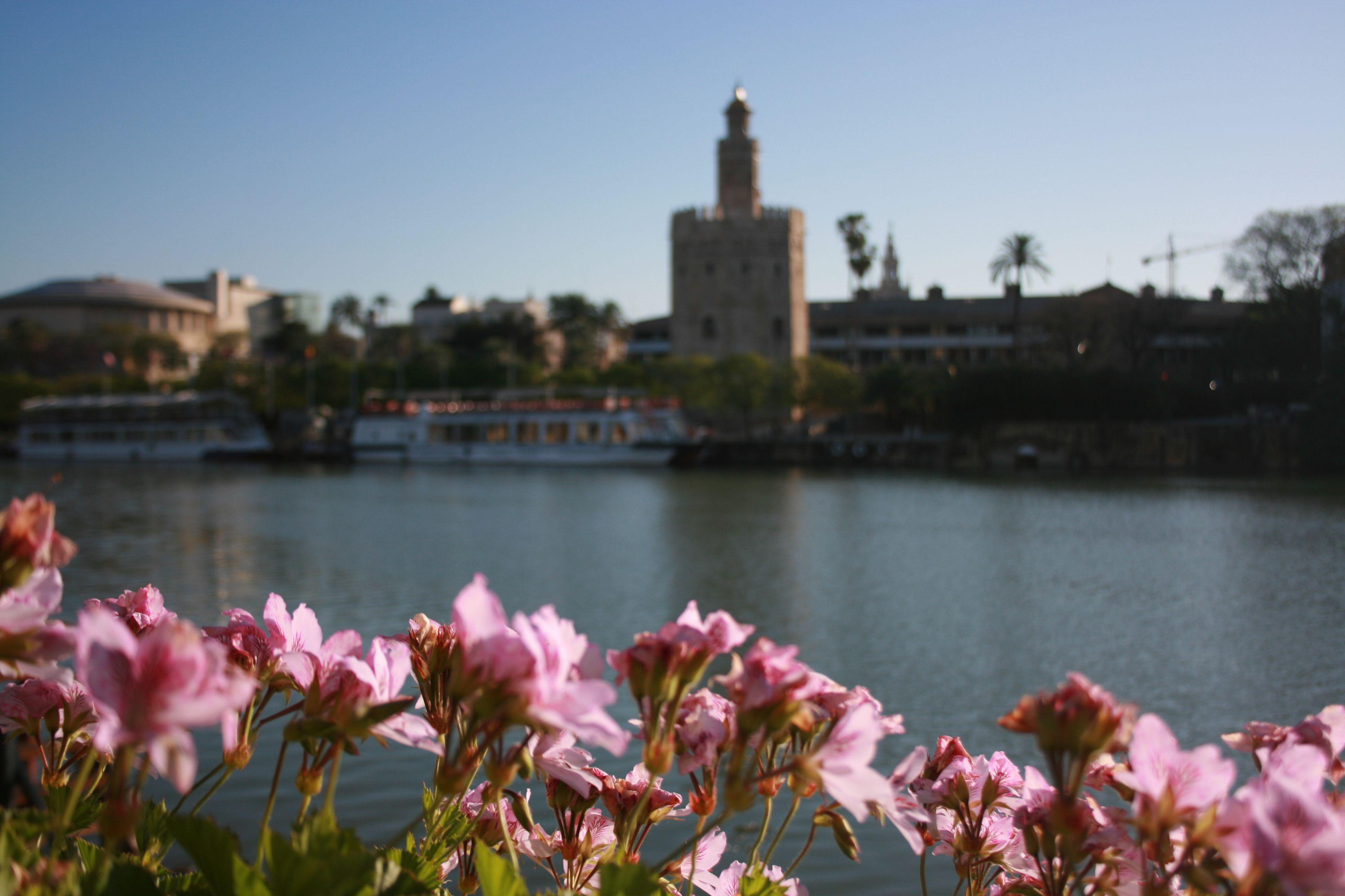 Flores en el Embarcadero. Restaurante Rio Grande, en Sevilla  http://riogrande-sevilla.com/