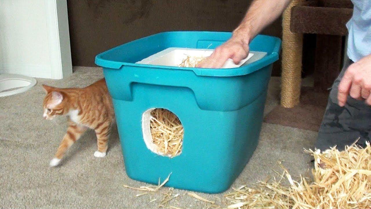 Un abri facile à construire pour protéger les chats Abri