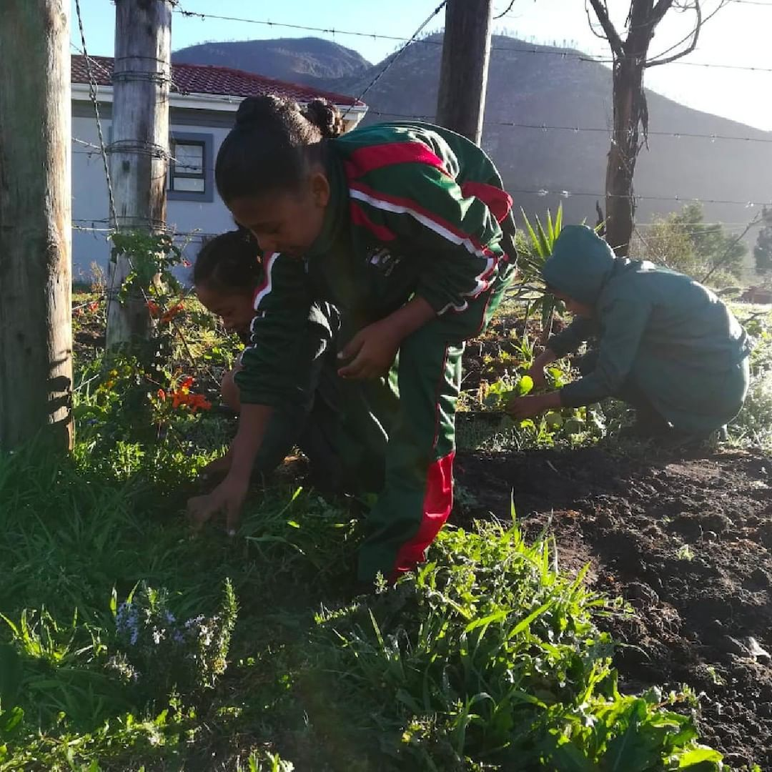 Gardening can teach communities about nature Johan Hus Primary School head girl Kimberly Valentine has said that her schools food garden has encouraged her to become a sc...