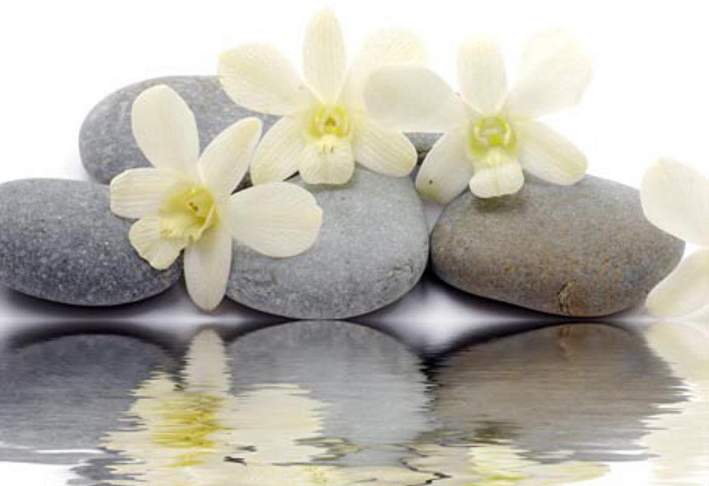 White Zen Stone Water Grey Calm Serenity Flowers
