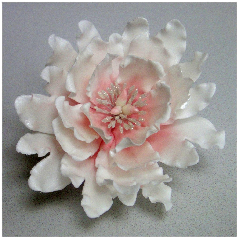 Fantasy Open Peony Wired Sugargumpaste Flower Tutorial By -7237
