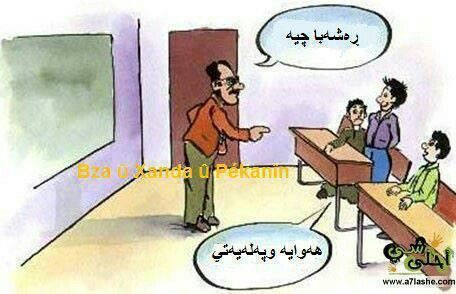 Pin By Manga Shaw On Kurdish Funny Quotes Funny Quotes Funny Caricature