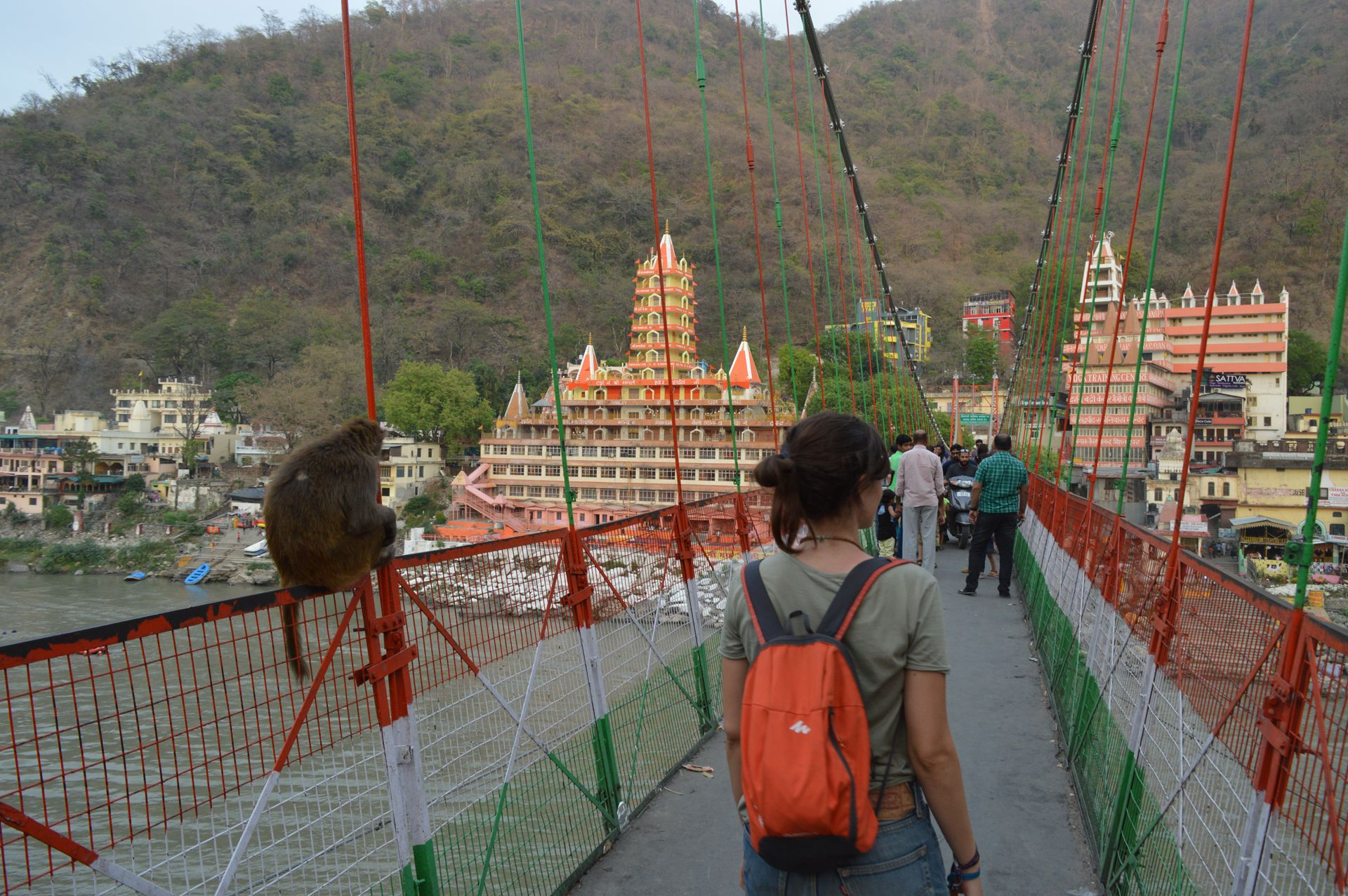 En Laxman Jula con un mono, Rishikesh
