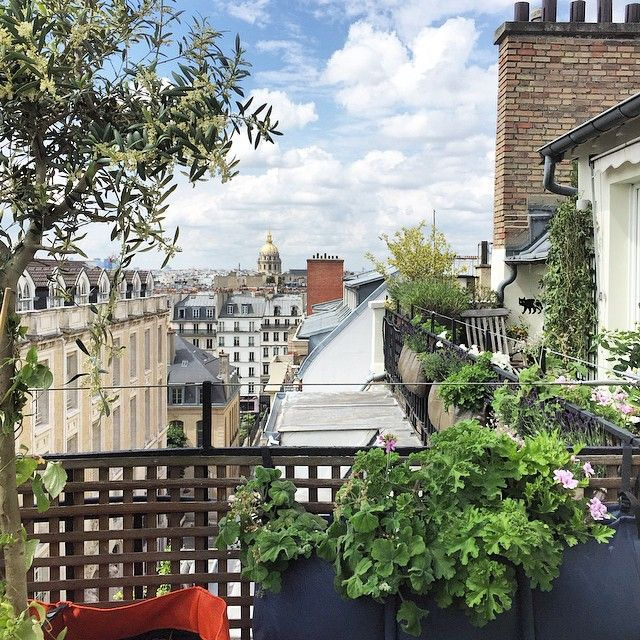 une superbe terrasse avec vue sur paris pour habiller la rambarde un grillage en bois. Black Bedroom Furniture Sets. Home Design Ideas