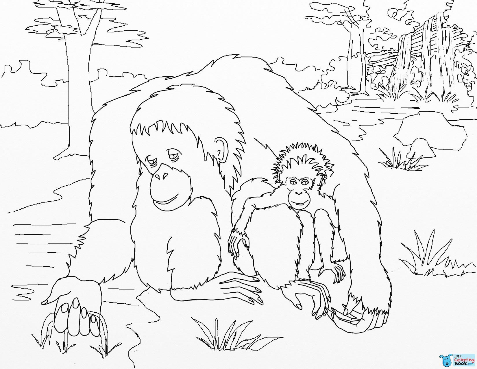 Pin On Gorilla Coloring Pages