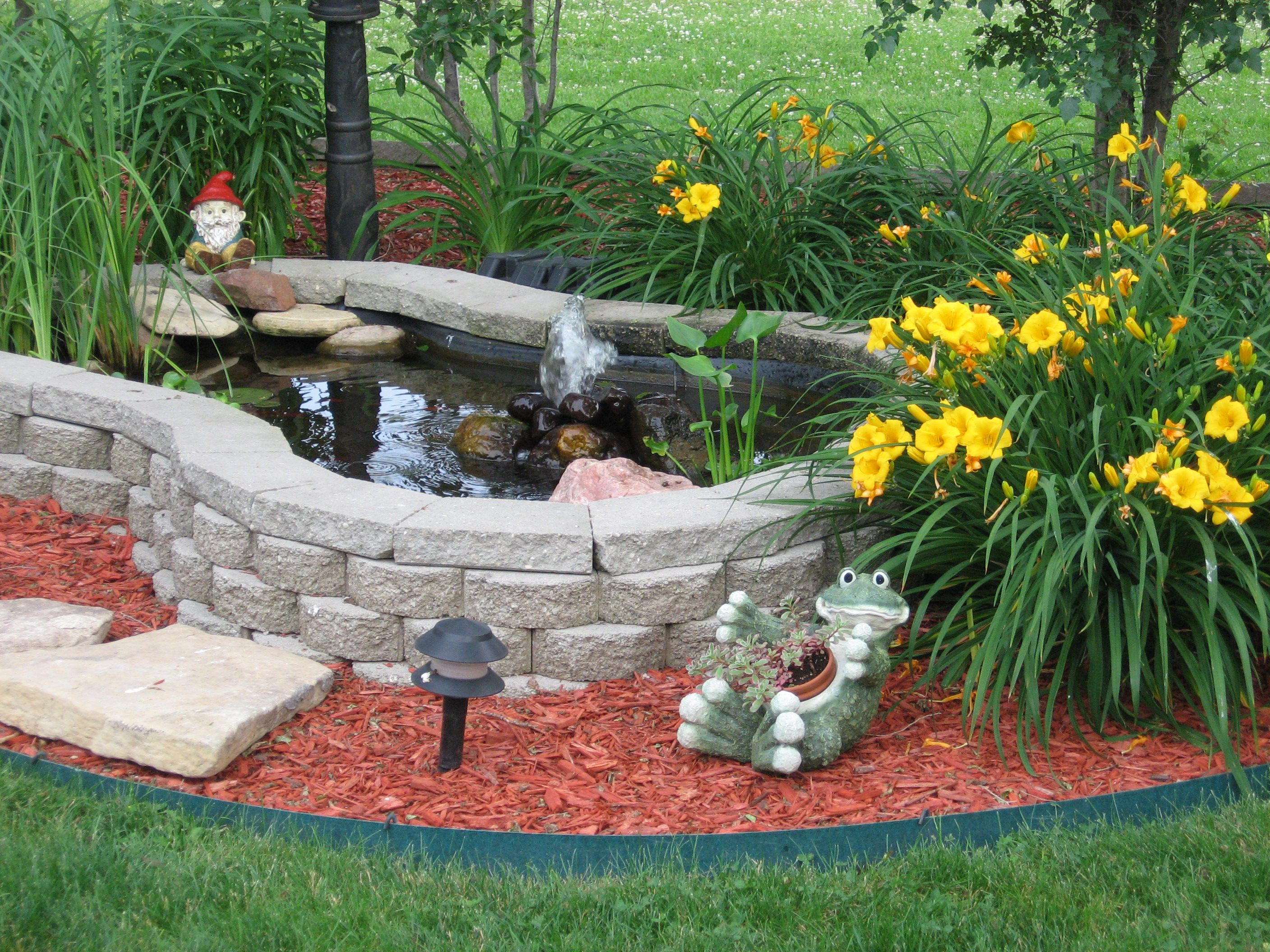 Small pond dreams of a beautiful yard for Garden fish ponds