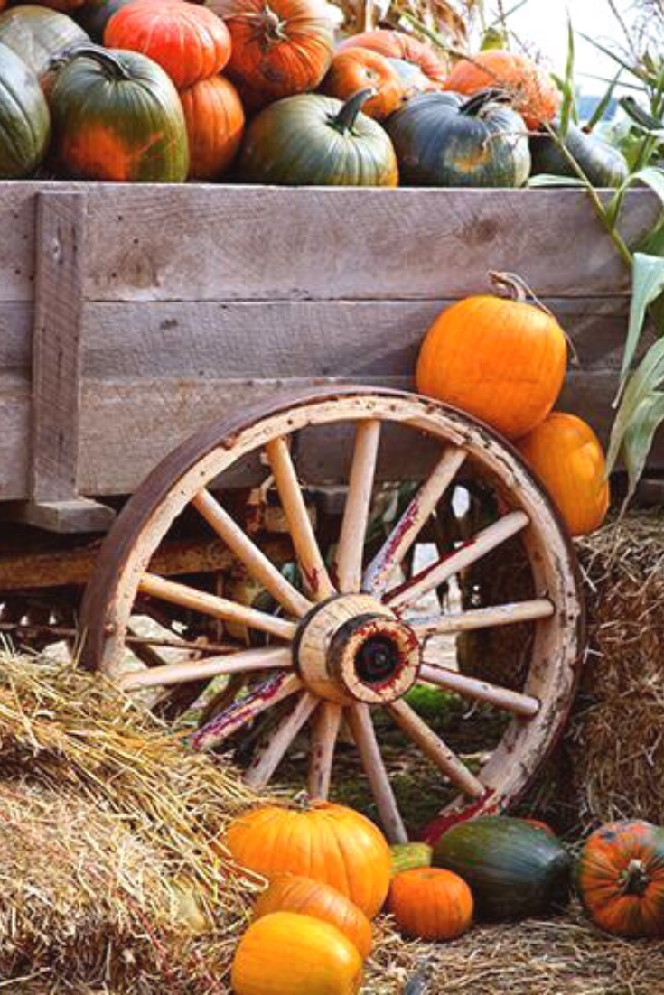Wagon Full of Pumpkins Door Cover #falldoordecorationsclassroom
