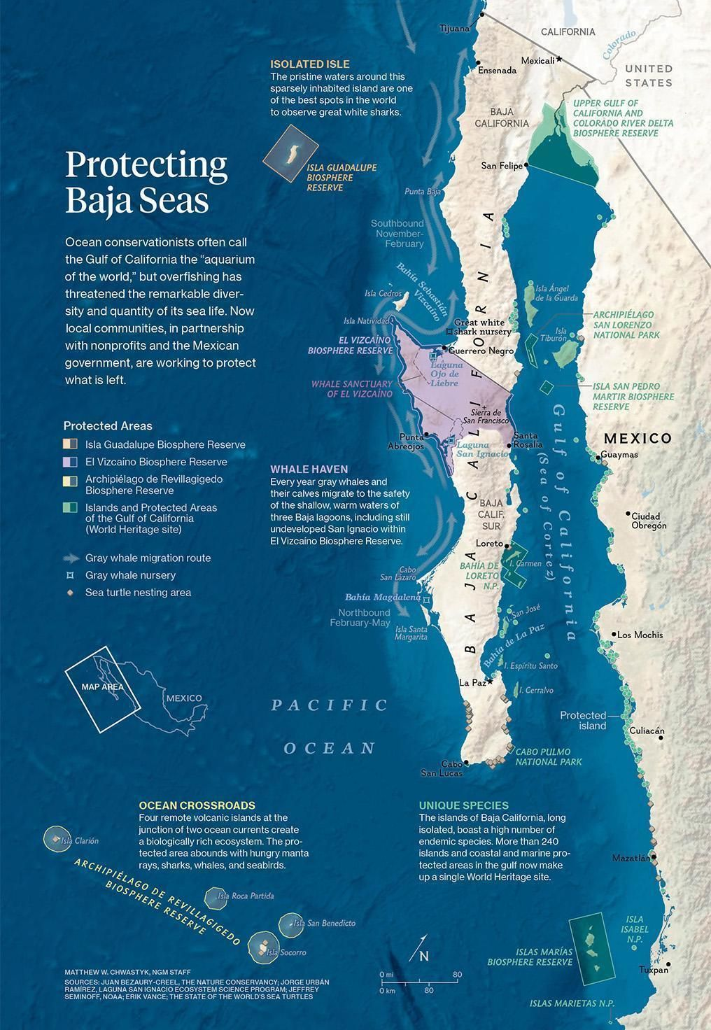 Baja California s recipe for saving fishing munities