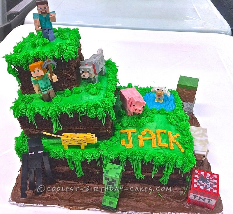 Easiest Minecraft Cake Ever With Images Minecraft Birthday