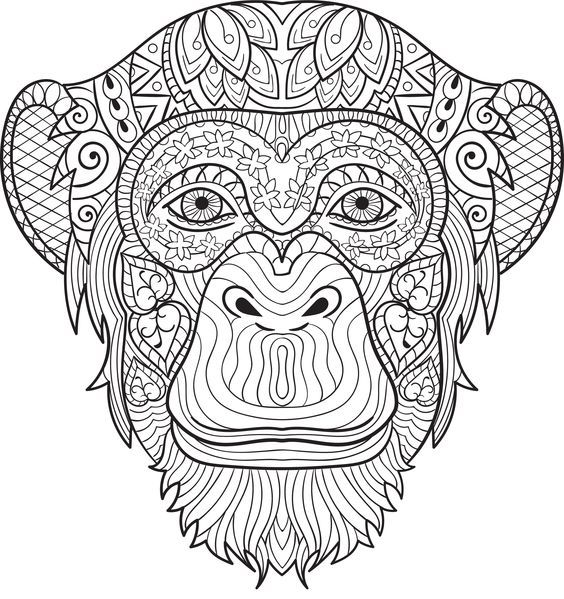Chimpanzee coloring page Animal Coloring Pages for Adults