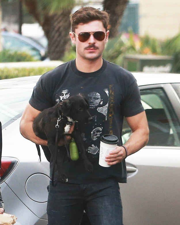 Here it is. Zac Efron with a mustache holding a puppy close to his chest.